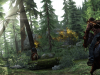 riding-through-woods